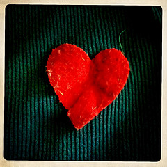 Felt heart applique